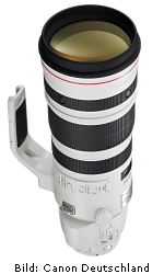 Canon EF 200-400mm 1:4L IS USM Extender 1.4x